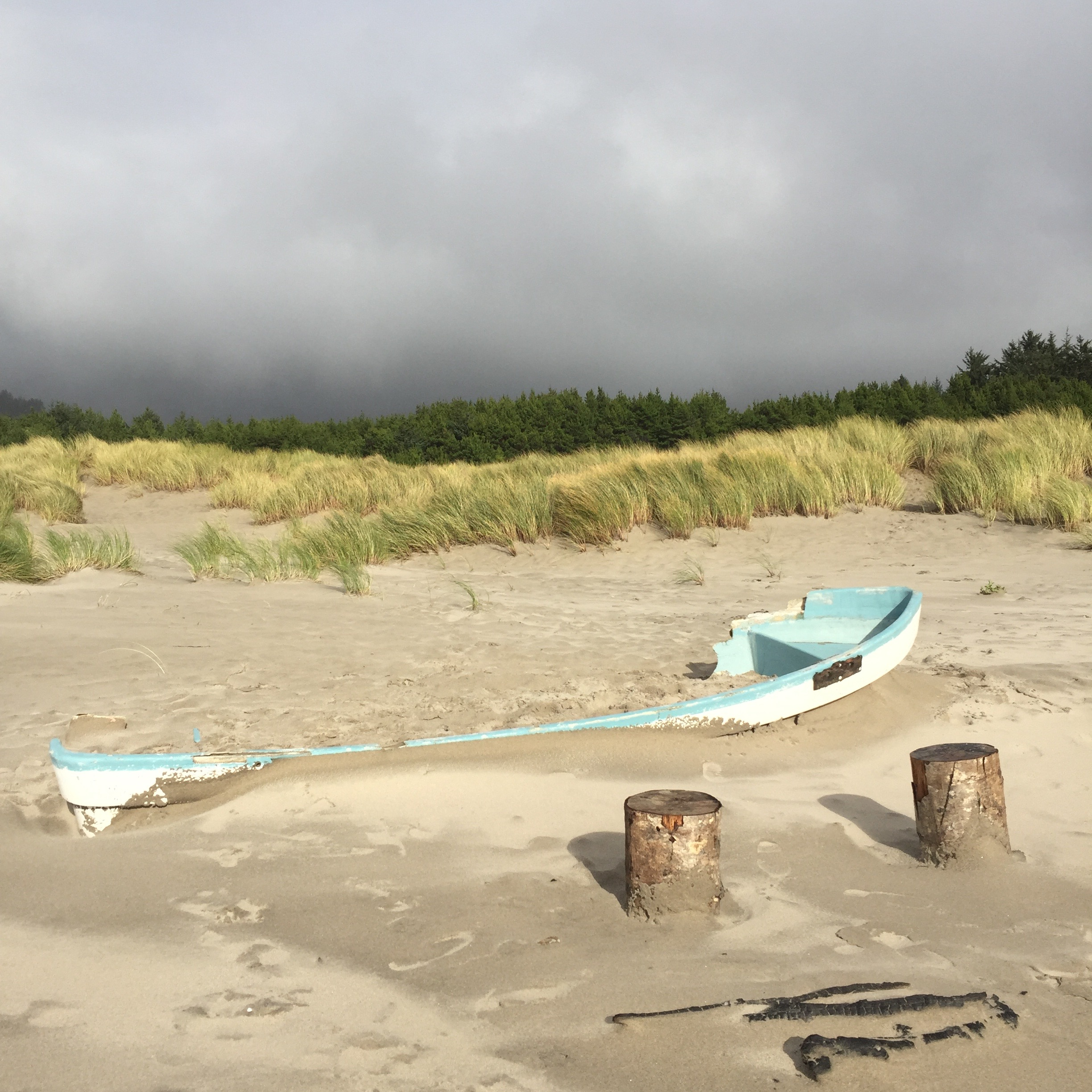 Japanese Tsunami Debris on the Oregon Coast